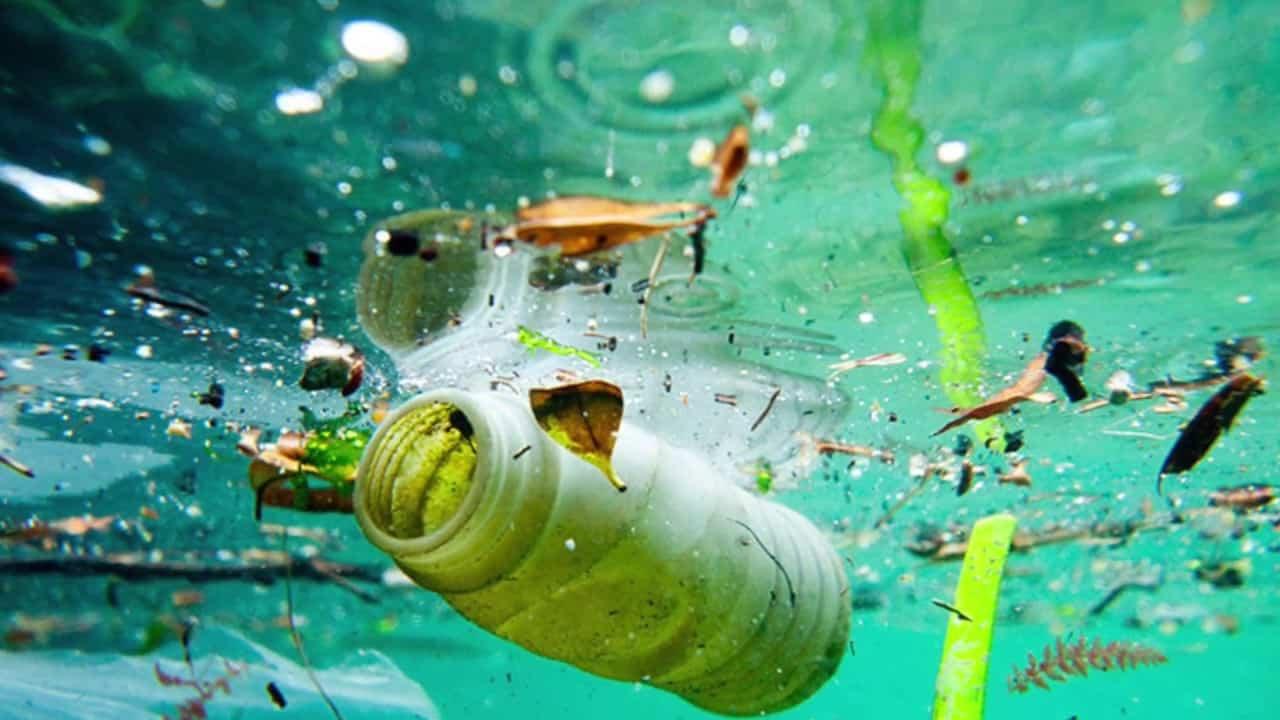 Ocean Pollution Bottle floating in the water.